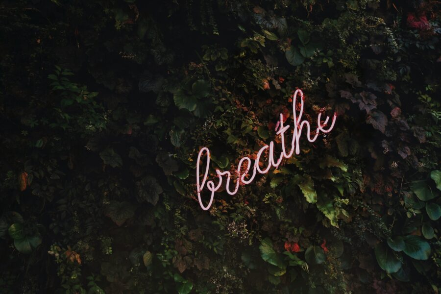 'Breathe' mindful neon light on a wall of foilage