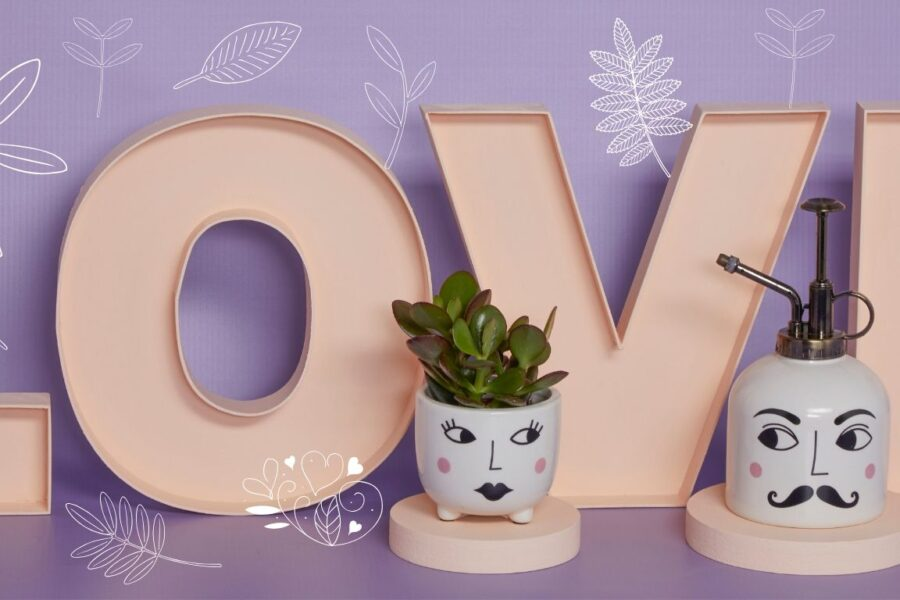 Alternative ways to celebrate Valentines Day - LOVE letters with Mr and Mrs planter and plant mister