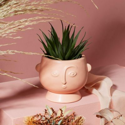 Small Face Planter Matt Pink