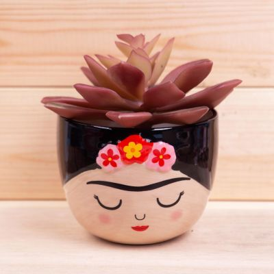 Mini Frida Dektop Planter