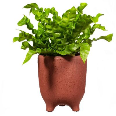 Speckled Leggy Planter Large - Brick