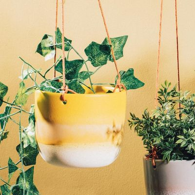 Mojave Yellow Hanging Planter