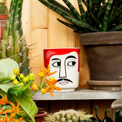 Mr Peterson Jar/ Planter