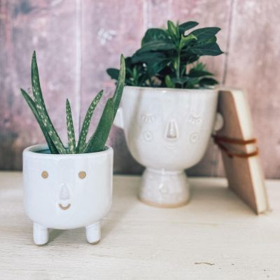 Little Smiley Face Glaze Leggy Planter