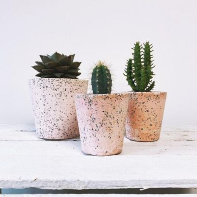 Barry The Cactus Pink Cluster of Terrazzo Pots