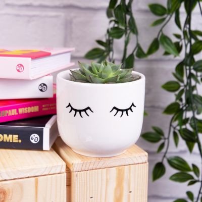 Sass & Belle Mini Eyes Desktop Planter