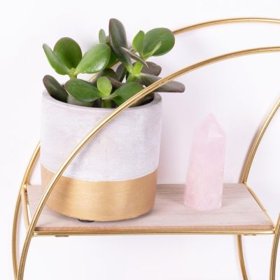 Tuva Gold Dip Cement Planter