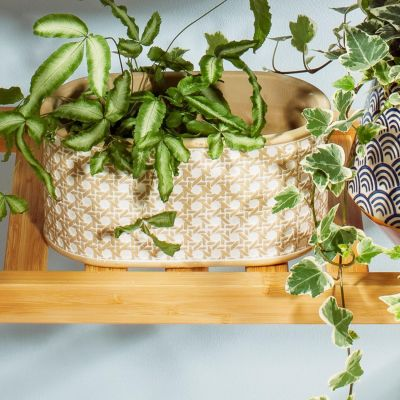 Rattan Weave Concrete Trough Planter