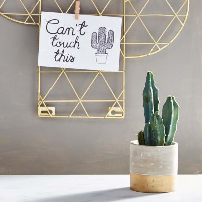 Mini Gold Dip Cement Planter