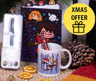 GET 25% OFF HARRY POTTER GIFTS!