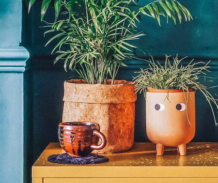 GIFTS FOR PLANT LOVERS!