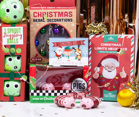 Novelty Christmas Gifts from £5!